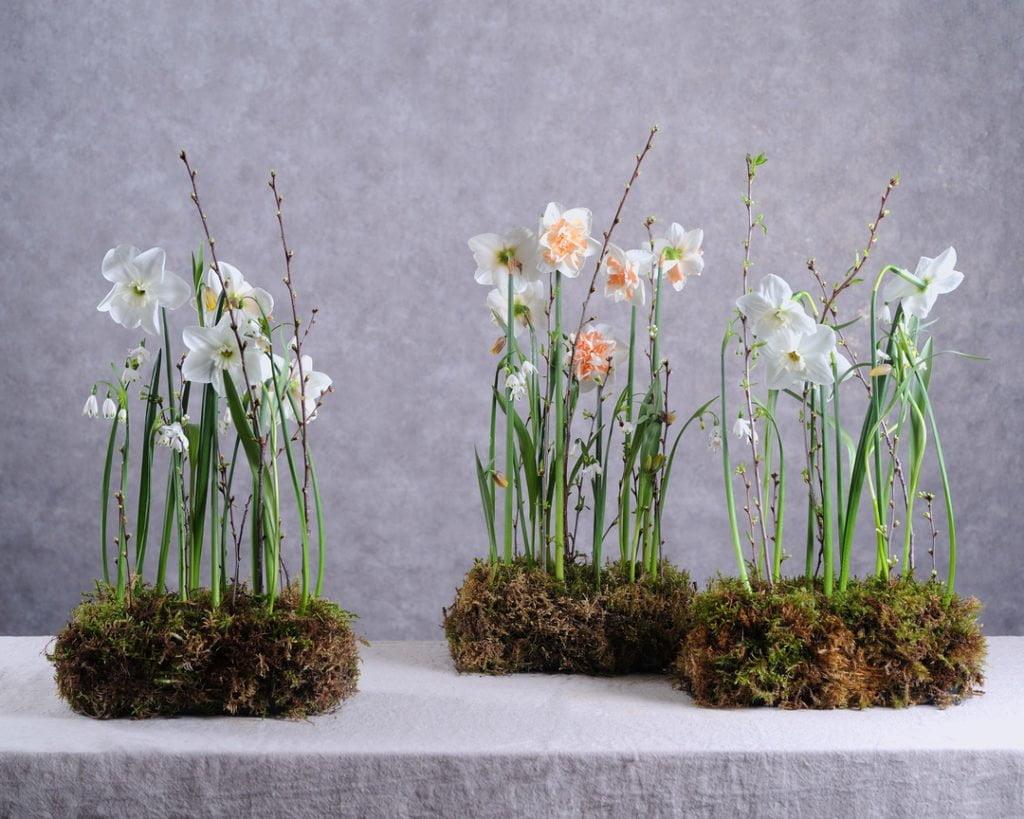 Профессия флорист Февраль 2020 5