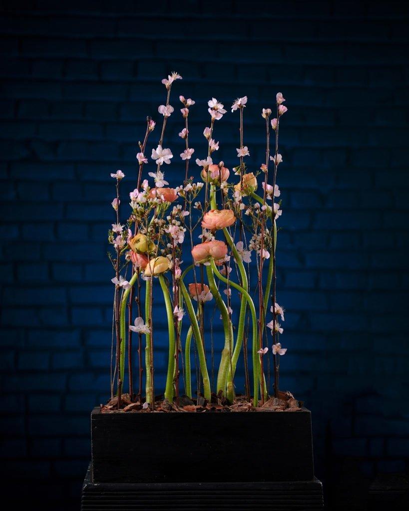 Профессия флорист Февраль 2020 4