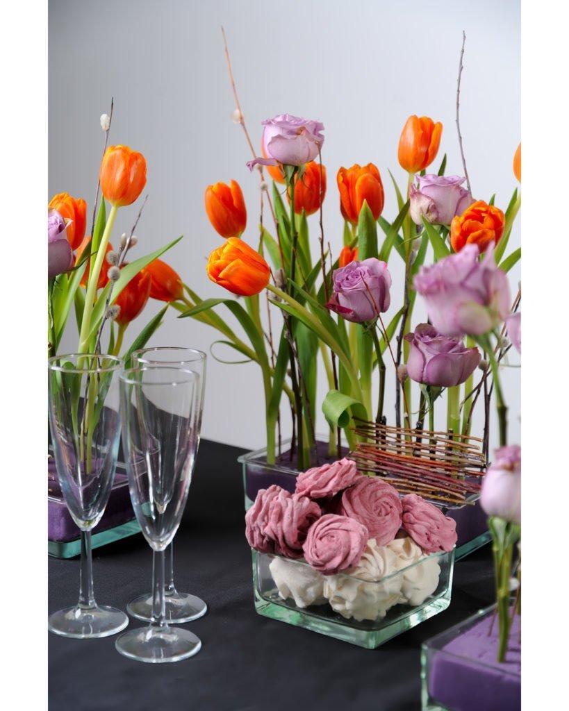 Тюльпан (Tulip) 5