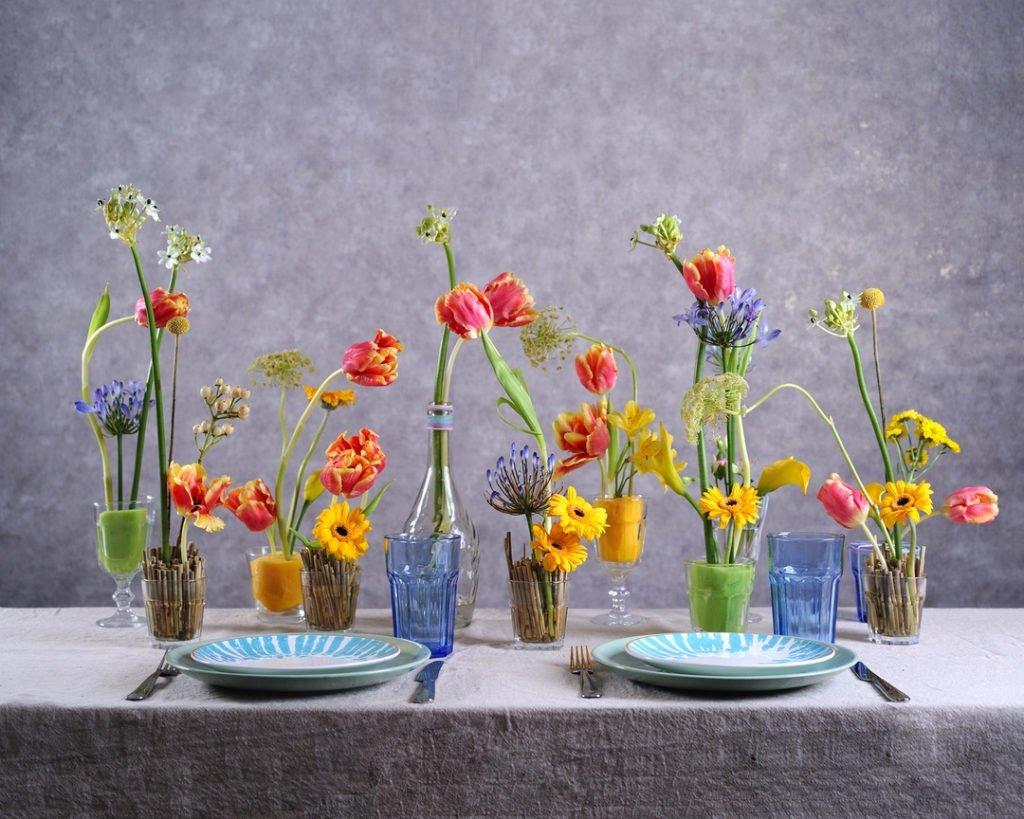 Тюльпан (Tulip) 4