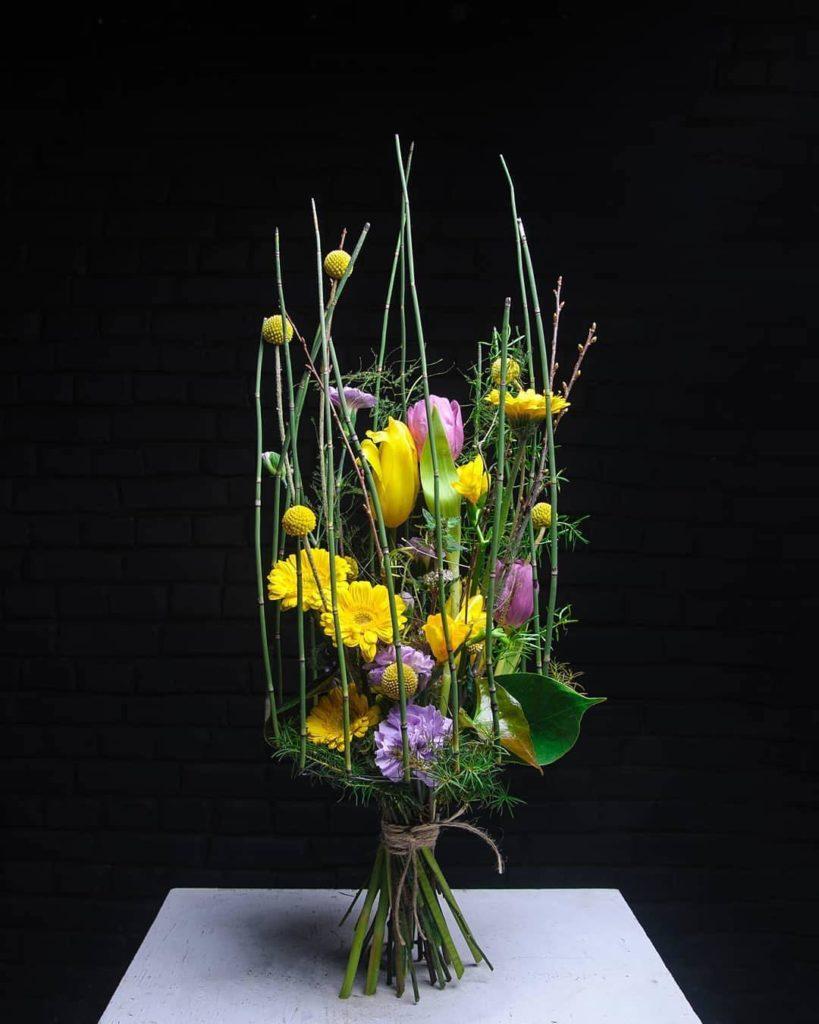 Тюльпан (Tulip) 6